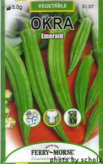 Okra Seed Packet