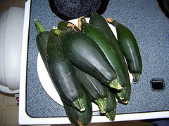 Harvested Zucchini