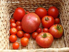 Different Tomato Varieties In Basket