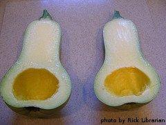 Cut Butternut Squash