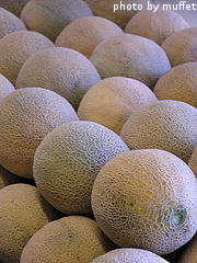 Bunch of Cantaloupes