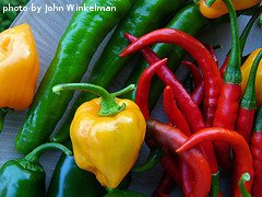 Different Hot Pepper Varieties