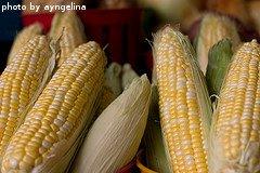 Shucked Corn