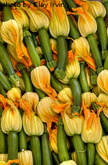 Harvested Zucchini Blossoms